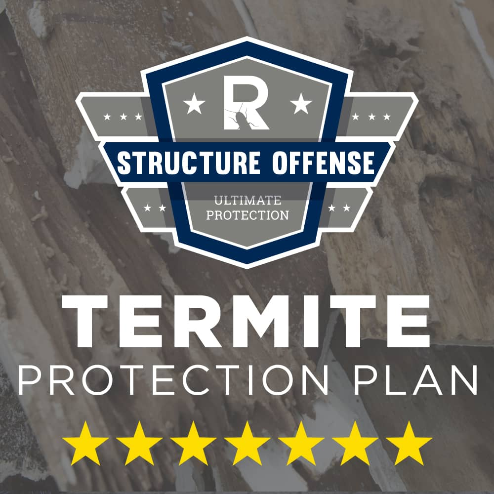 Termite Protection Plan - Initial Payment